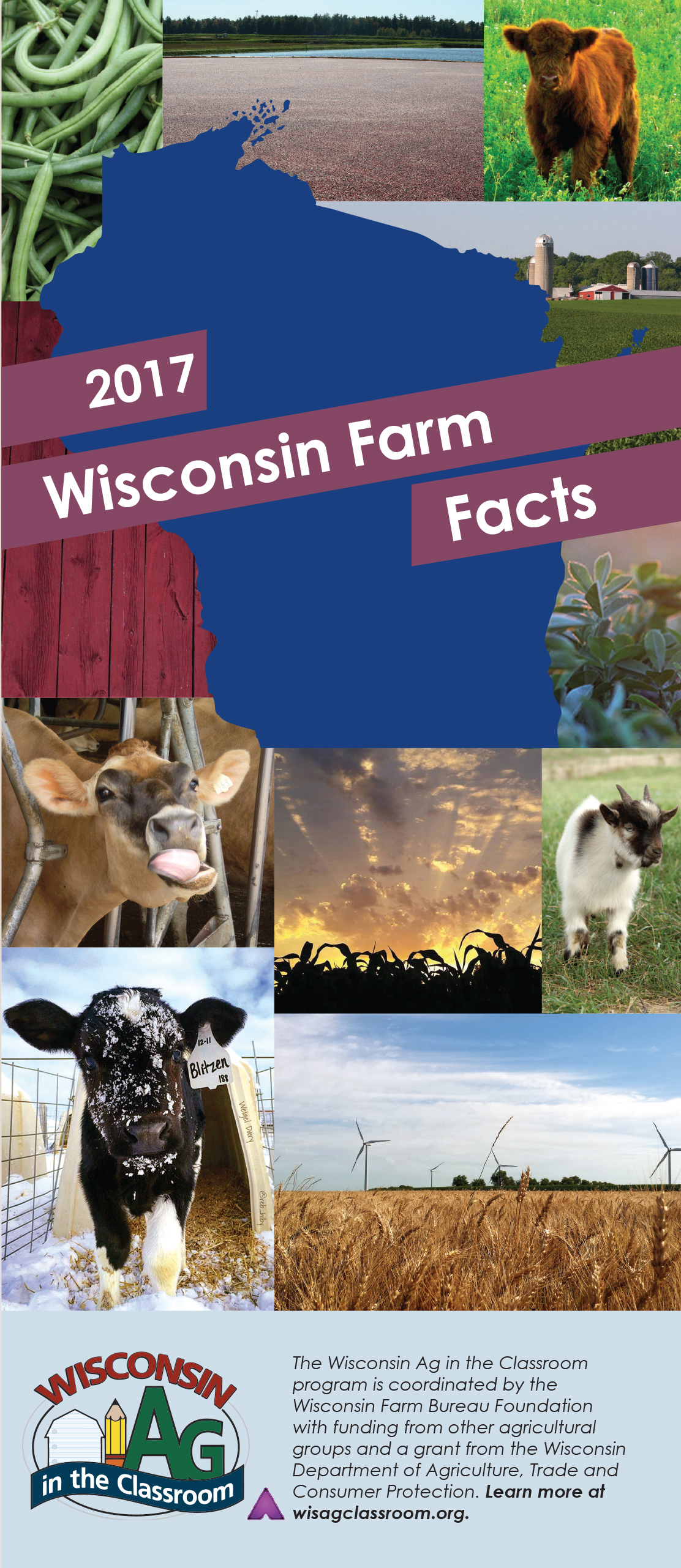 2017 WI Farm Facts Cover