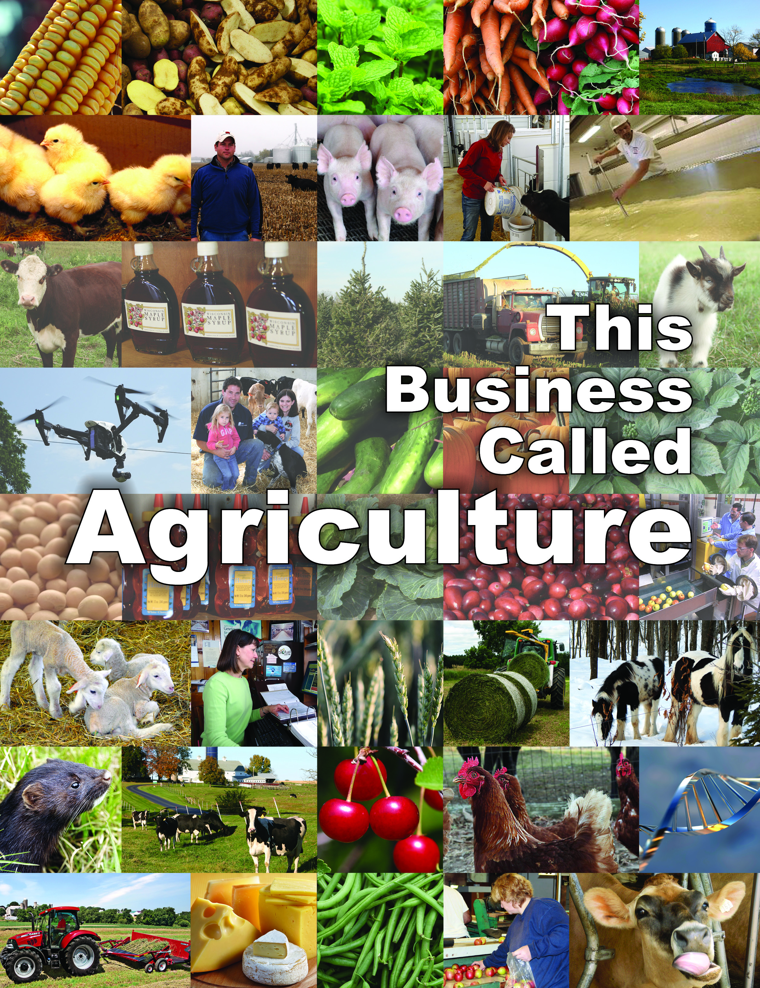Business Called Agriculture Cover
