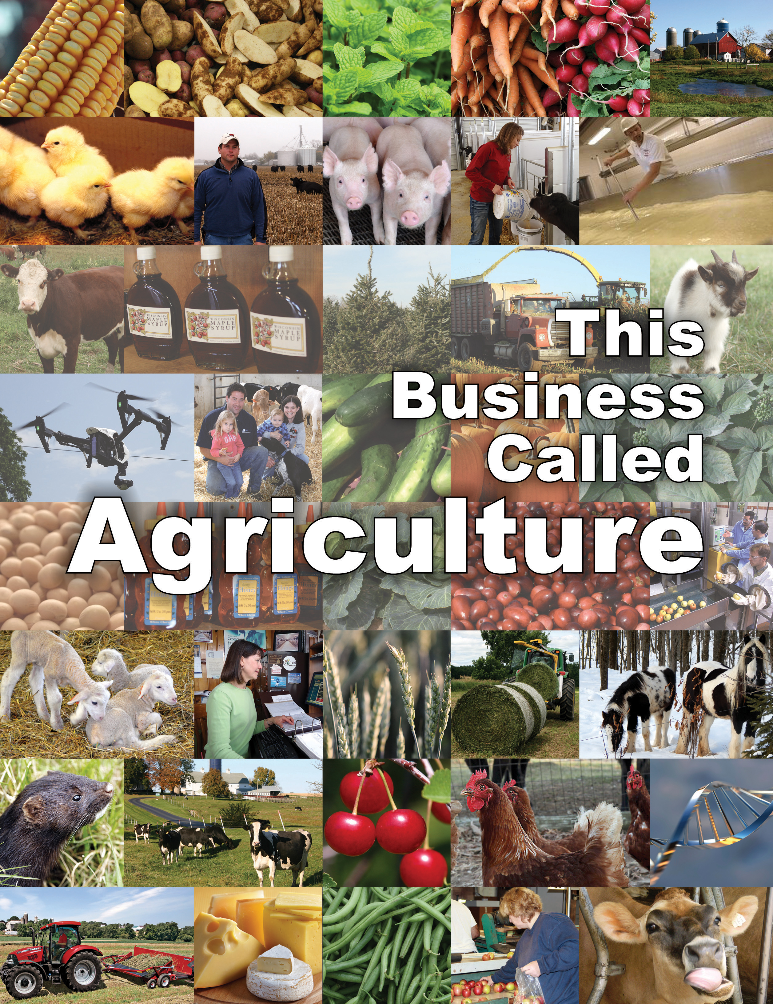 This Business Called Agriculture Student Cover