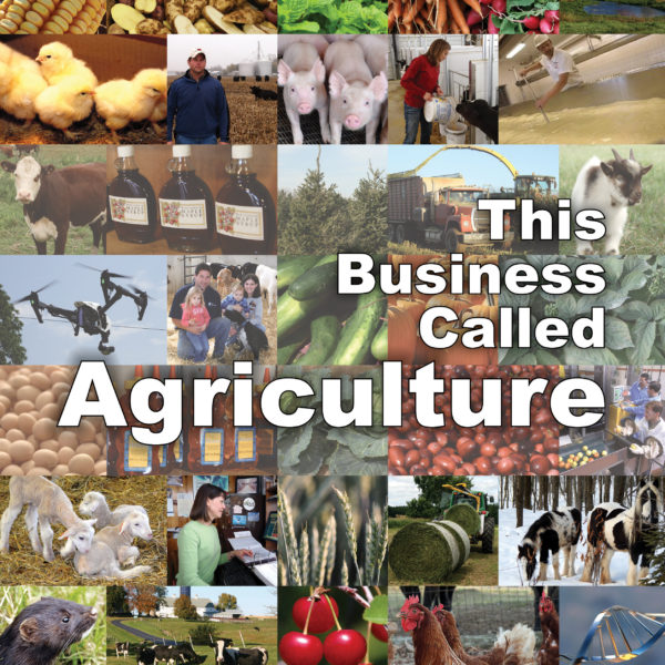 This Business Called Agriculture