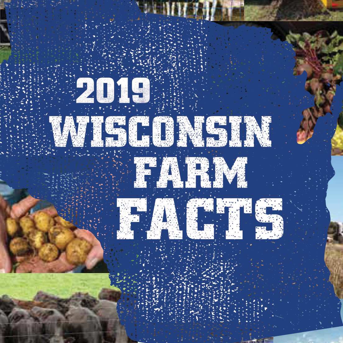 Wisconsin-Farm-Facts-2019_cover_thumb