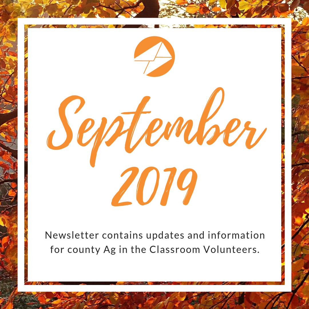 September 2019 AITC Newsletter