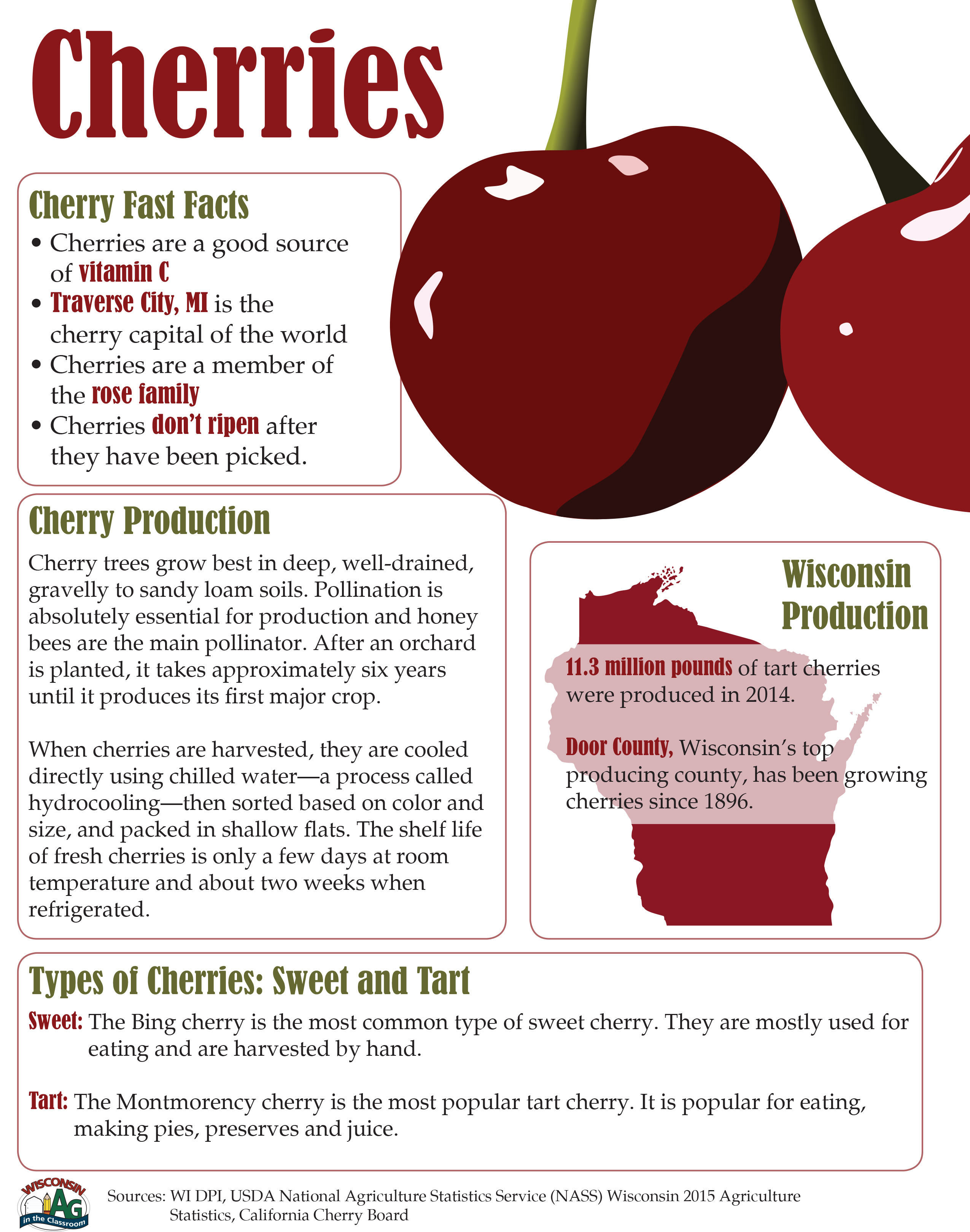 Cherries Fact Sheet