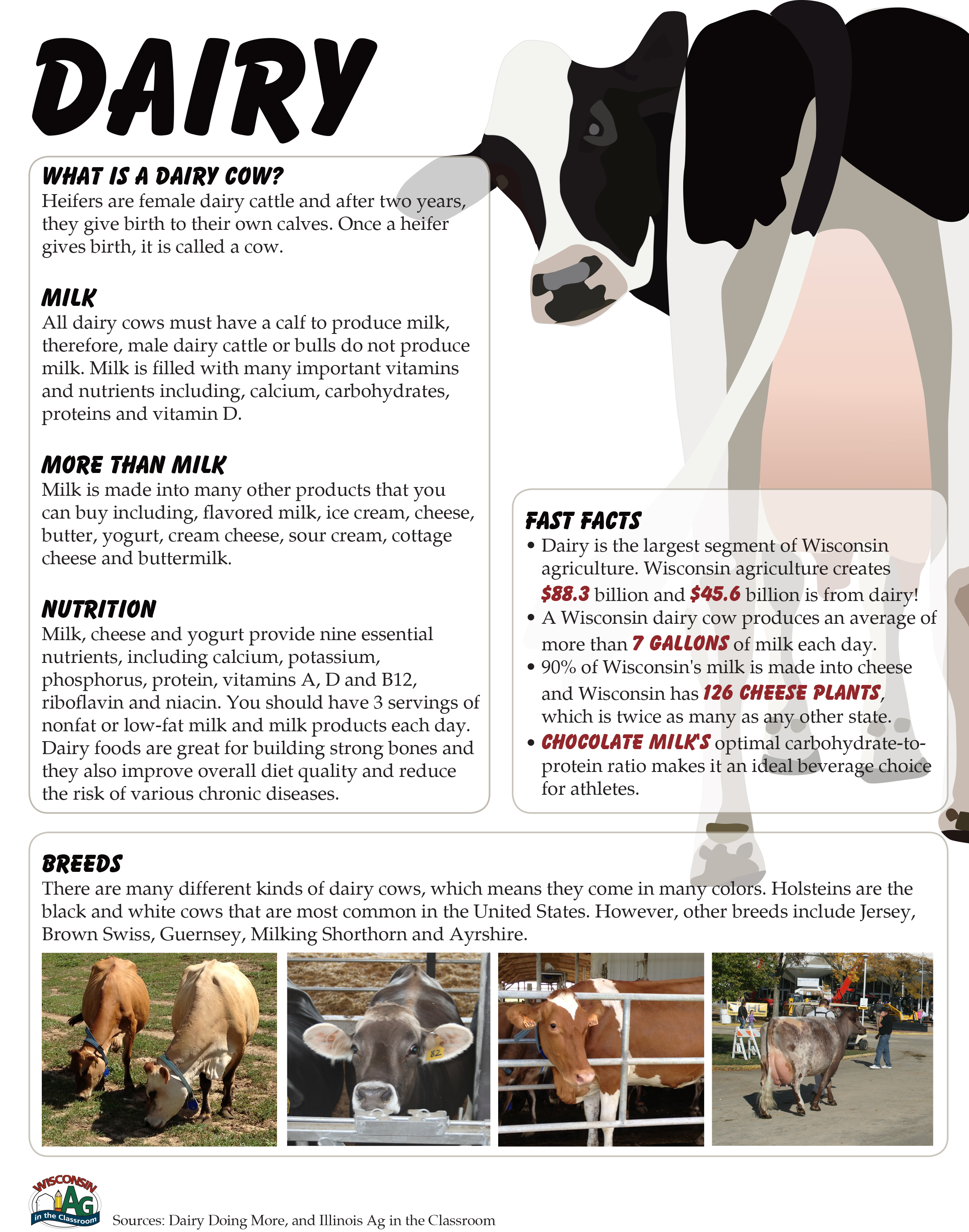 Dairy Fact Sheet