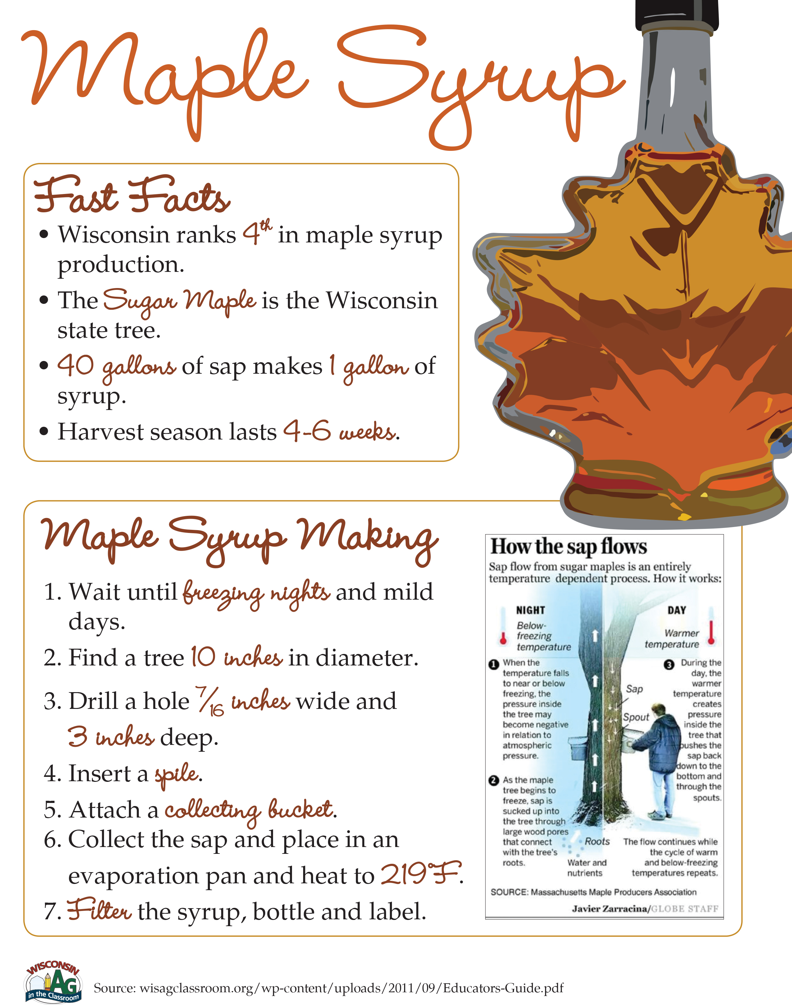 Maple Syrup Fact Sheet