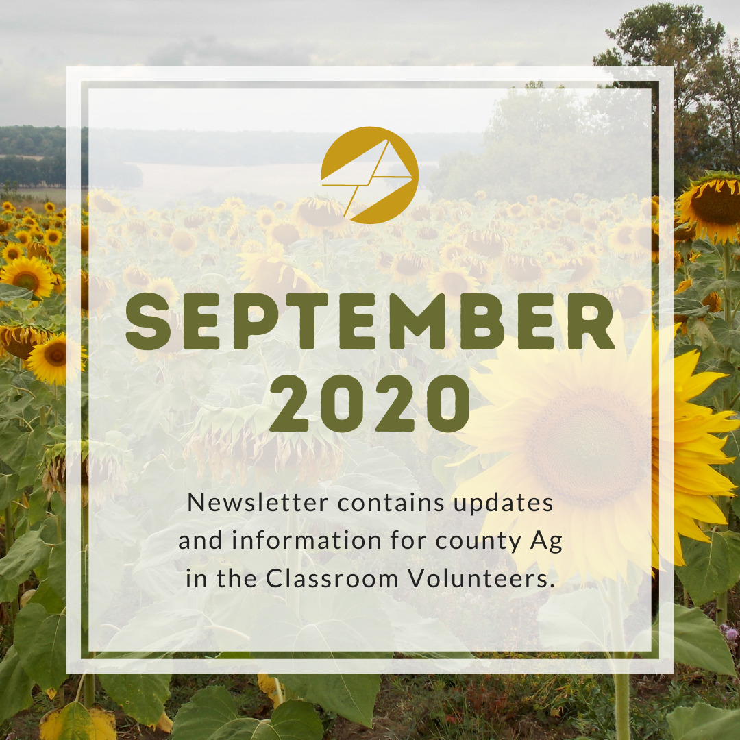 September 2020 Volunteer Newsletter