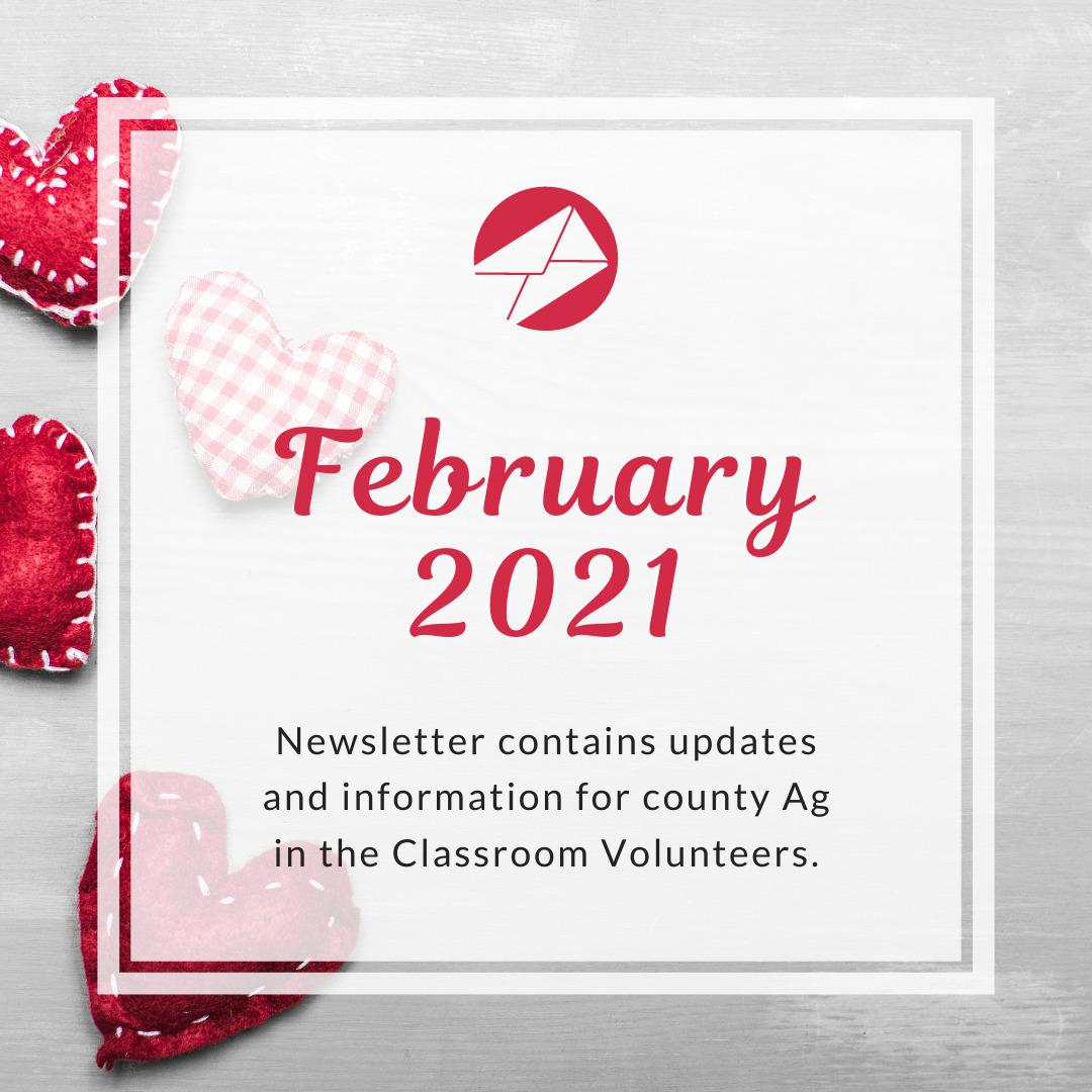 Volunteer Newsletter Feb 2021